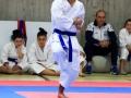 coppa242 sport
