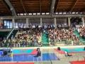 coppa5 sport