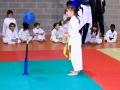 vedano146 sport