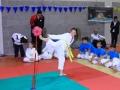 vedano484 sport